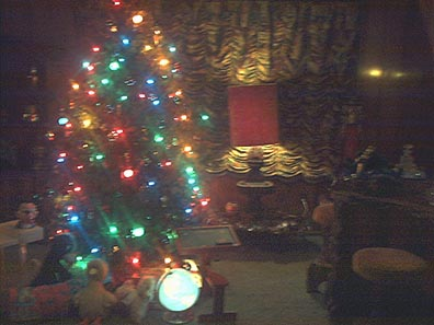 inside tree with Lisa Marie's old toys